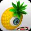 大菠萝扑克 v1.1 安卓版