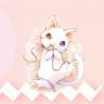 小猫交流器 V1.0 安卓版